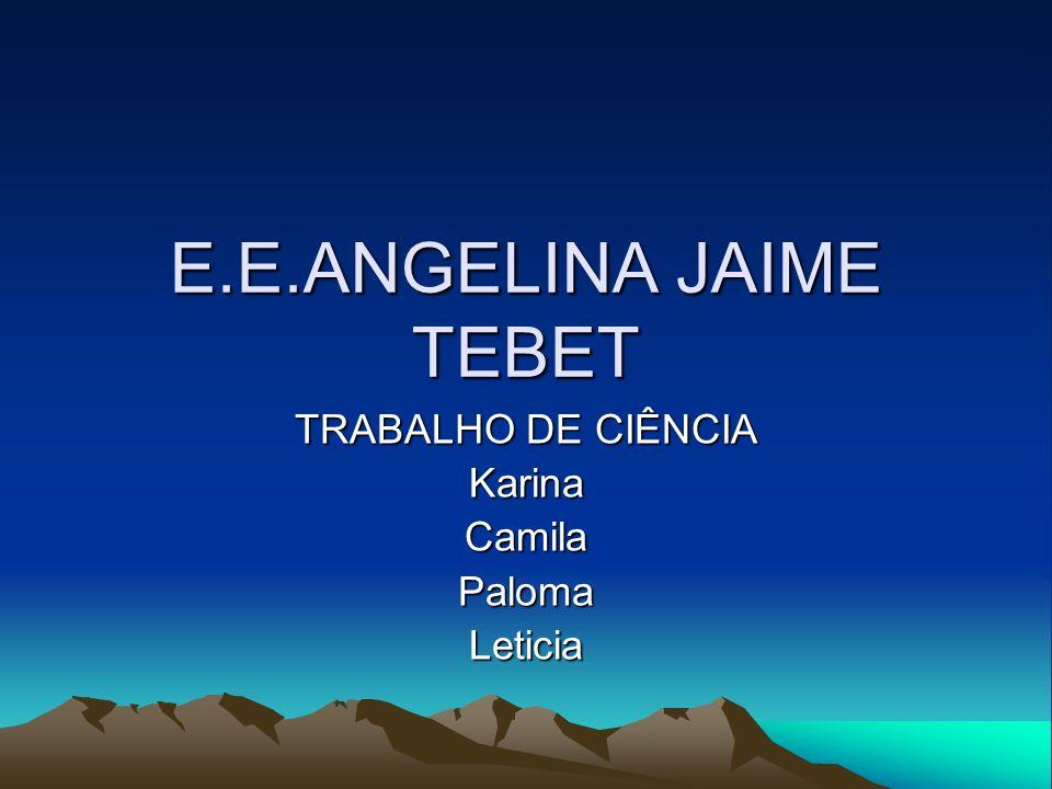 E.E.ANGELINA JAIME TEBET TRABALHO DE CIÊNCIA KarinaCamilaPalomaLeticia
