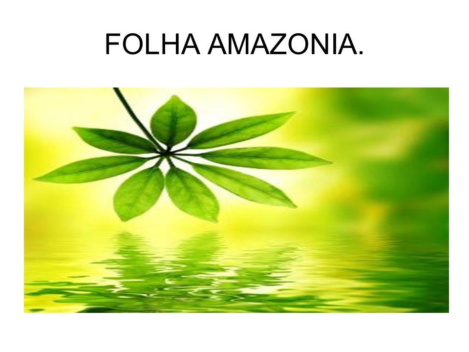 FOLHA AMAZONIA.