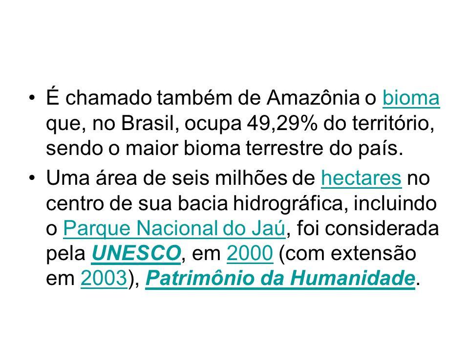 É chamado também de Amazônia o bioma que, no Brasil, ocupa 49,29% do território, sendo o maior bioma terrestre do país.bioma Uma área de seis milhões