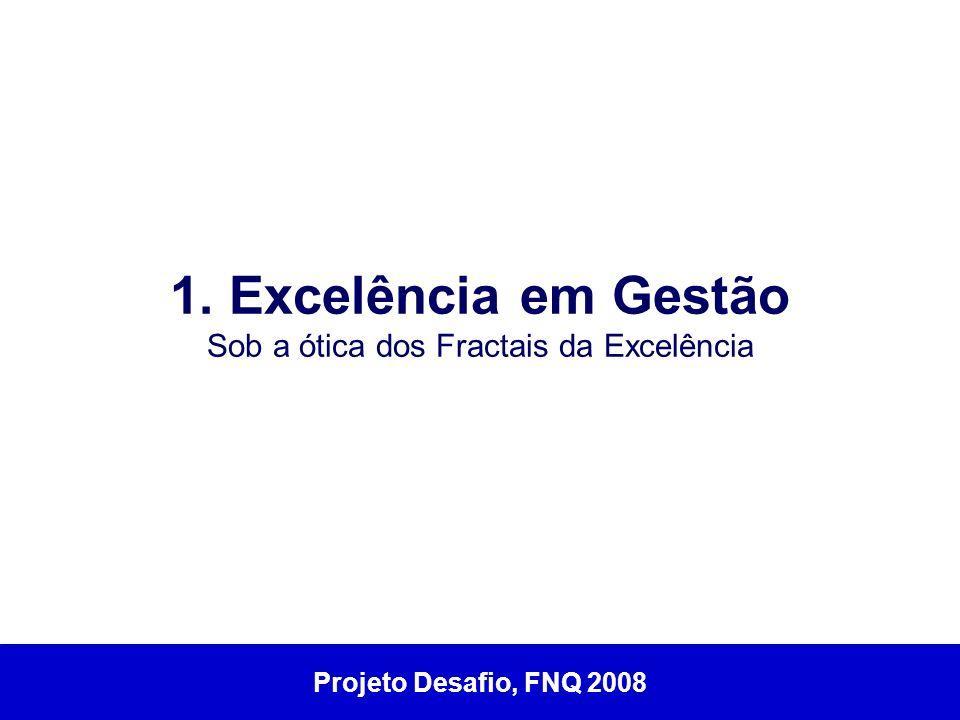 1. Excelência em Gestão Sob a ótica dos Fractais da Excelência Projeto Desafio, FNQ 2008