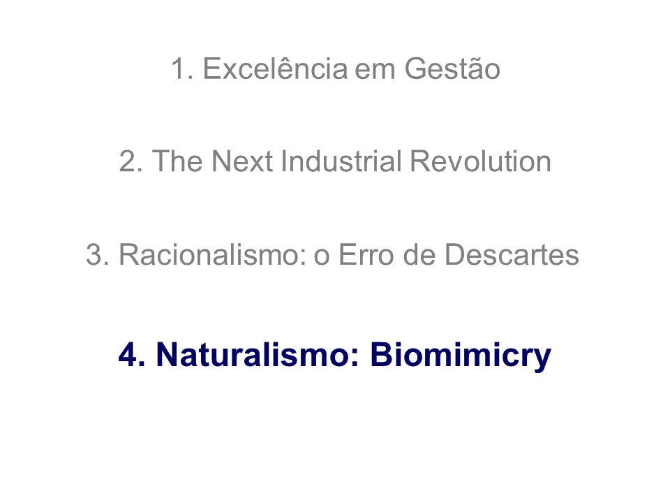 1. Excelência em Gestão 2. The Next Industrial Revolution 3. Racionalismo: o Erro de Descartes 4. Naturalismo: Biomimicry