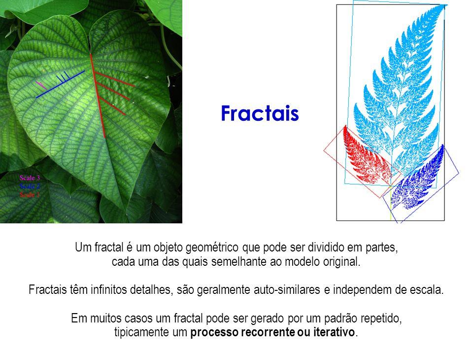 Um fractal é um objeto geométrico que pode ser dividido em partes, cada uma das quais semelhante ao modelo original. Fractais têm infinitos detalhes,