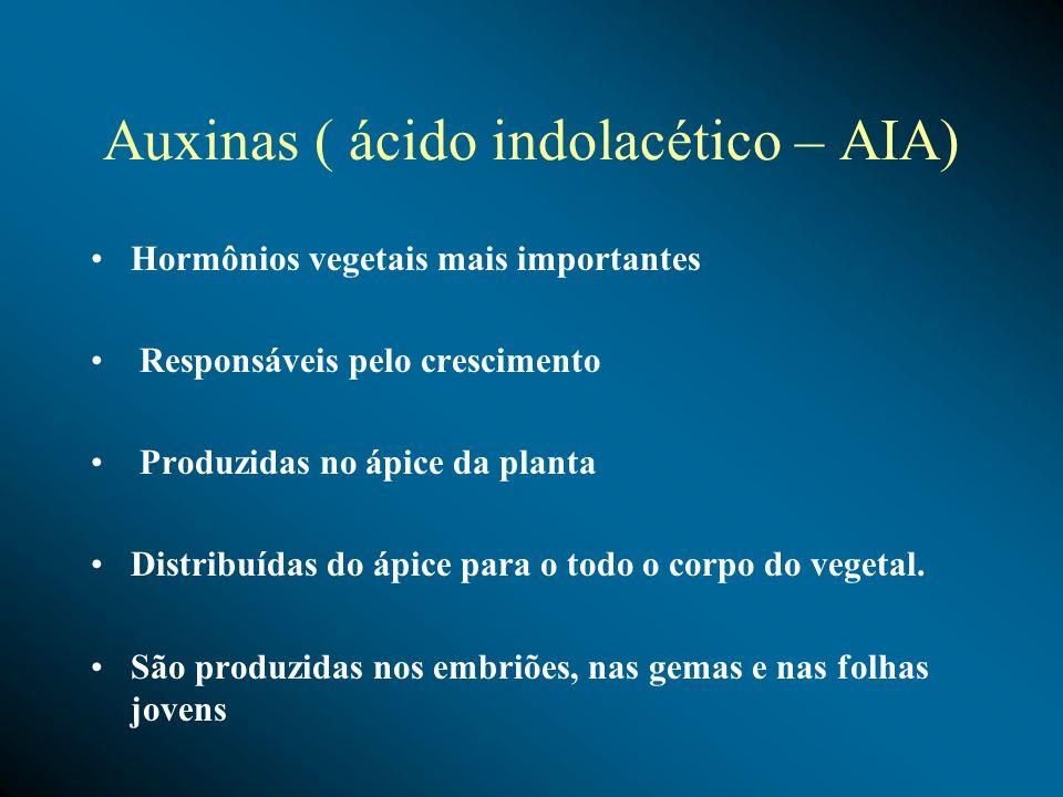 Auxinas ( ácido indolacético – AIA) Hormônios vegetais mais importantes Responsáveis pelo crescimento Produzidas no ápice da planta Distribuídas do áp