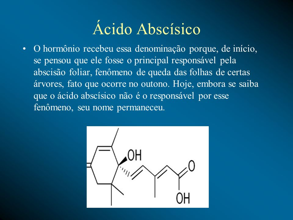 Ácido Abscísico O hormônio recebeu essa denominação porque, de início, se pensou que ele fosse o principal responsável pela abscisão foliar, fenômeno
