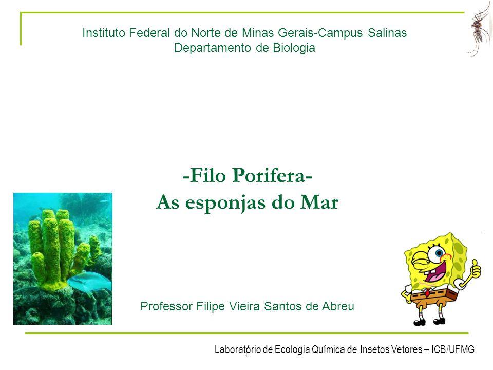 Laboratório de Ecologia Química de Insetos Vetores – ICB/UFMG 1 Instituto Federal do Norte de Minas Gerais-Campus Salinas Departamento de Biologia -Fi