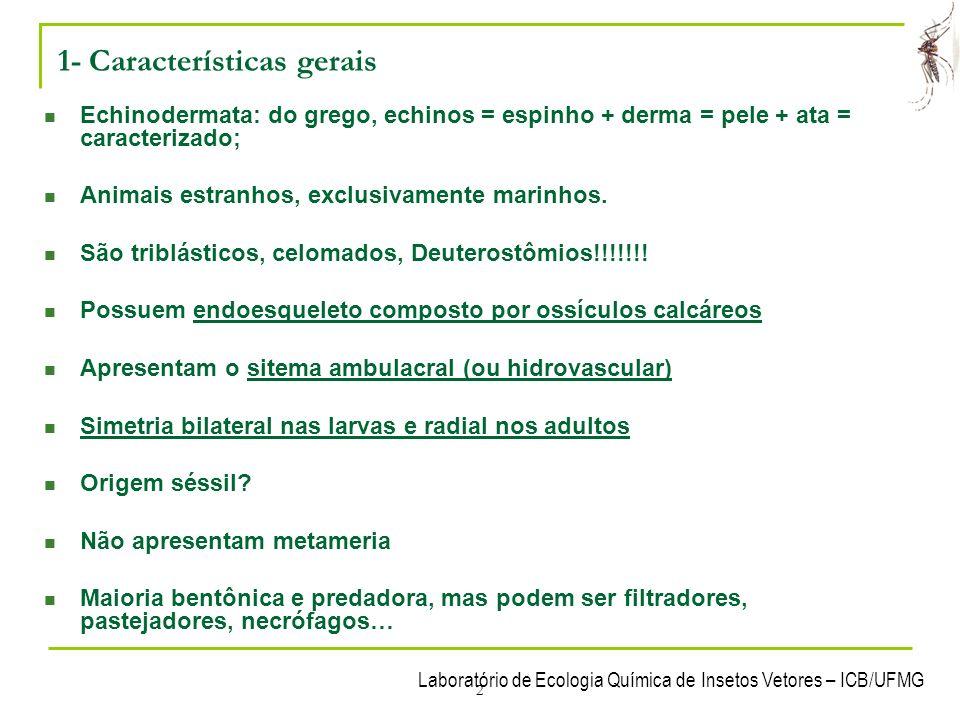 Laboratório de Ecologia Química de Insetos Vetores – ICB/UFMG 2 1- Características gerais Echinodermata: do grego, echinos = espinho + derma = pele +