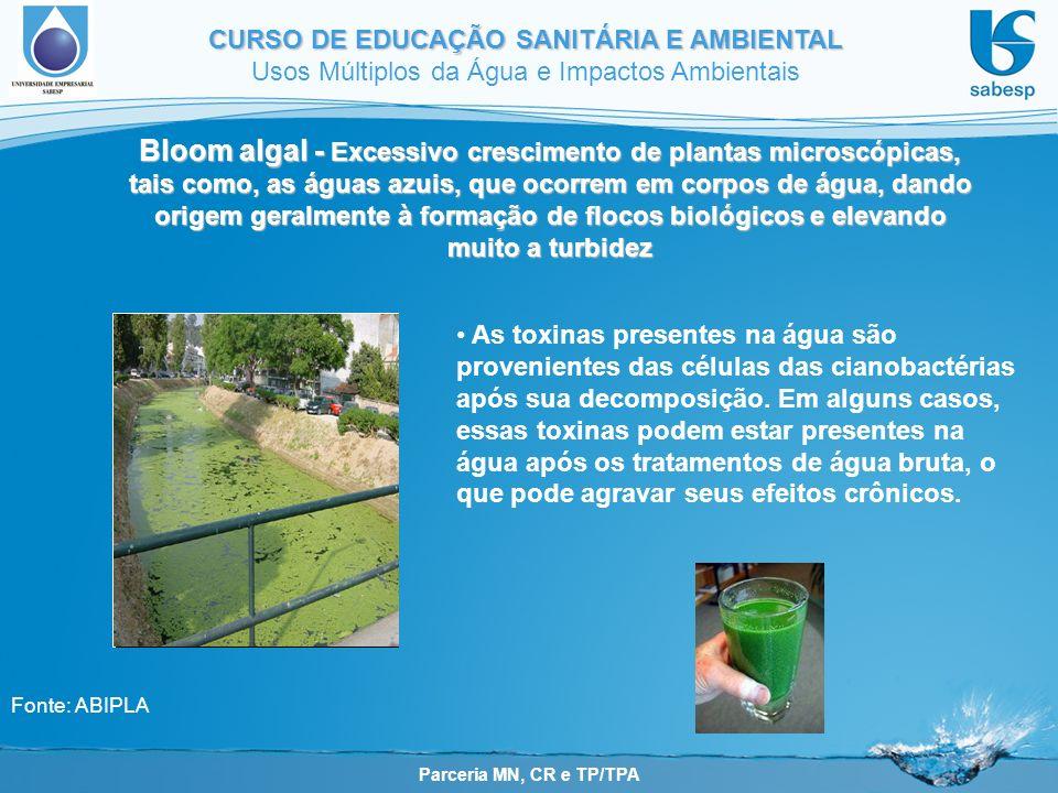 Parceria MN, CR e TP/TPA CURSO DE EDUCAÇÃO SANITÁRIA E AMBIENTAL Usos Múltiplos da Água e Impactos Ambientais Bloom algal - Excessivo crescimento de p