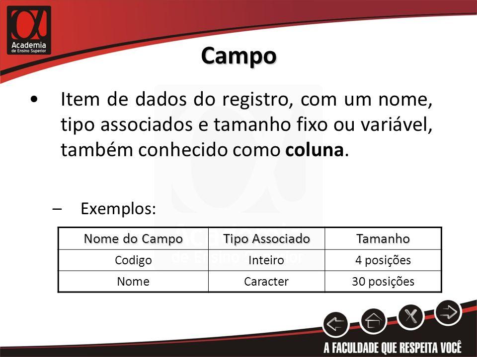 Campo Item de dados do registro, com um nome, tipo associados e tamanho fixo ou variável, também conhecido como coluna. –Exemplos: Nome do Campo Tipo