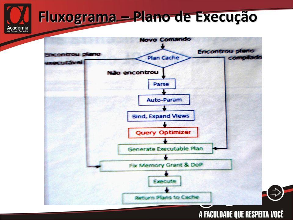 Fluxograma – Plano de Execução