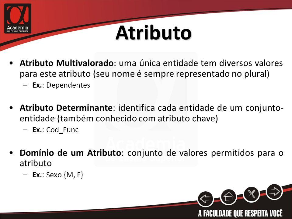 Atributo Atributo Multivalorado: uma única entidade tem diversos valores para este atributo (seu nome é sempre representado no plural) –Ex.: Dependent