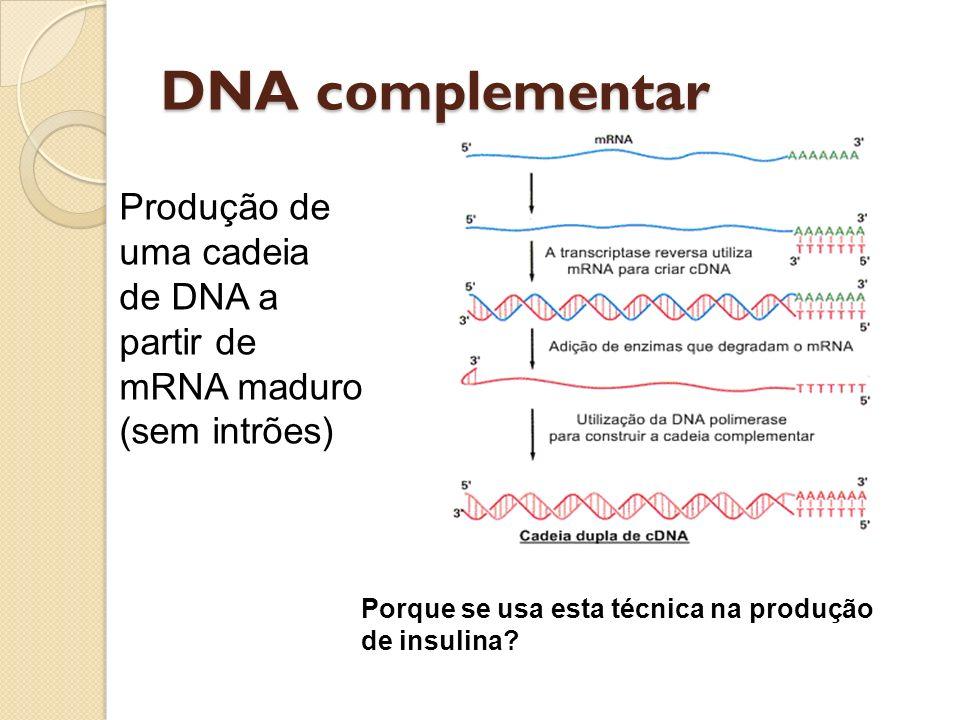DNA complementar Produção de uma cadeia de DNA a partir de mRNA maduro (sem intrões) Porque se usa esta técnica na produção de insulina?