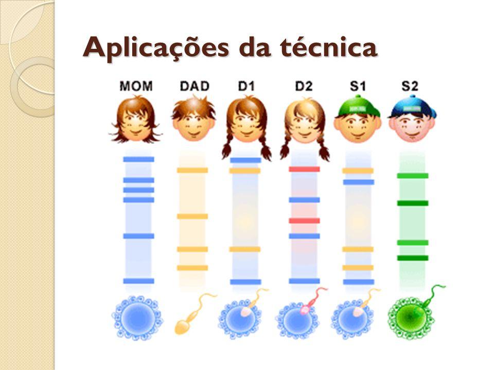 Aplicações da técnica