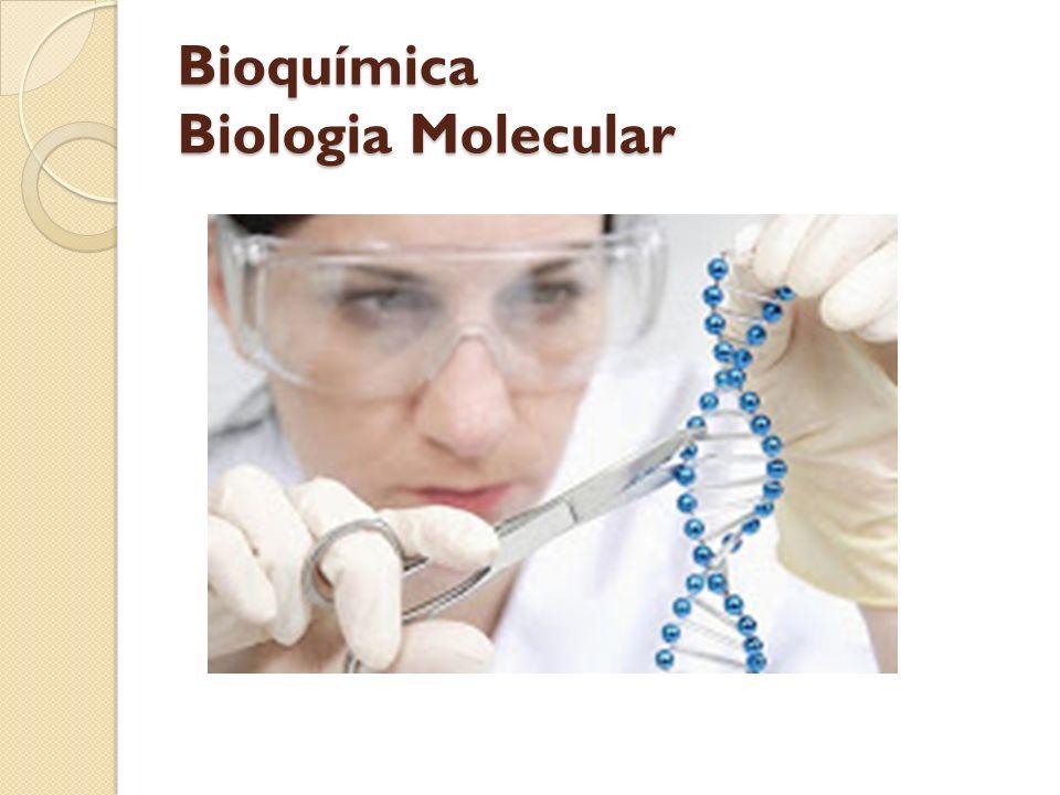 Bioquímica Biologia Molecular
