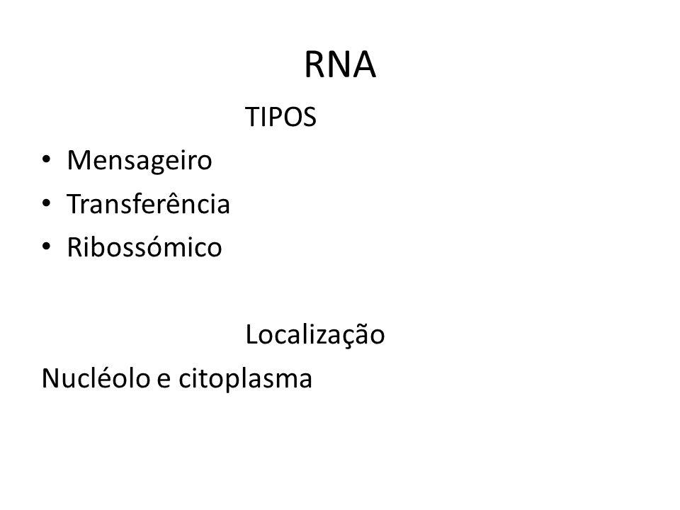RNA TIPOS Mensageiro Transferência Ribossómico Localização Nucléolo e citoplasma