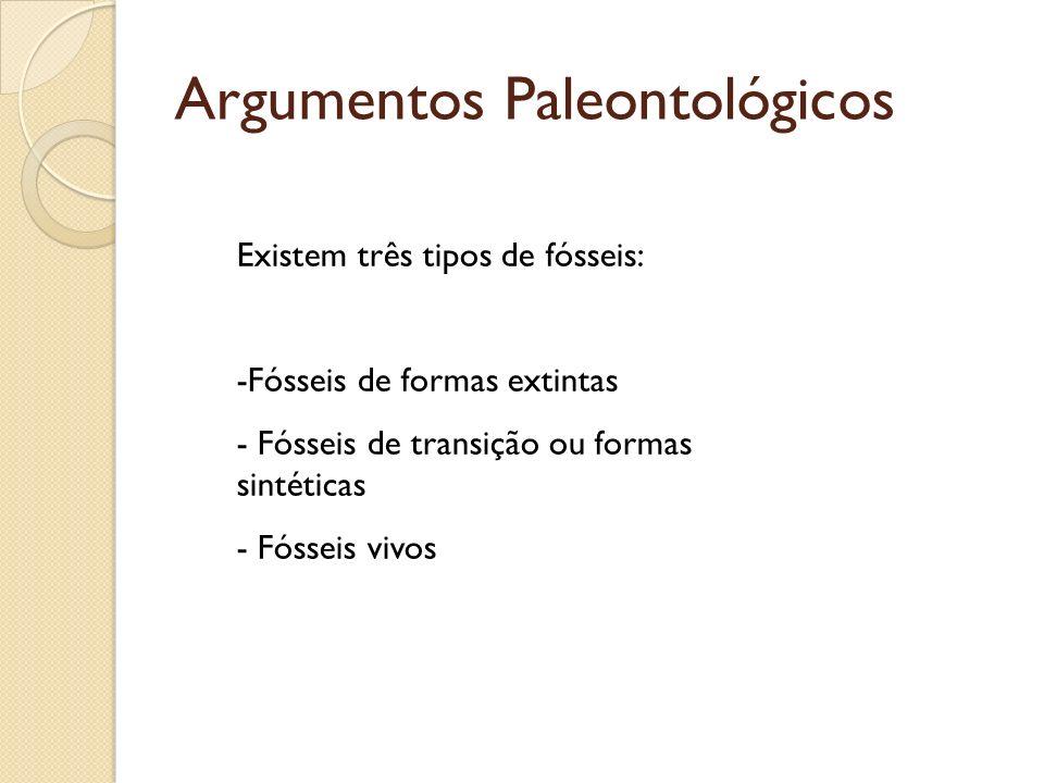 Argumentos Paleontológicos Existem três tipos de fósseis: -Fósseis de formas extintas - Fósseis de transição ou formas sintéticas - Fósseis vivos