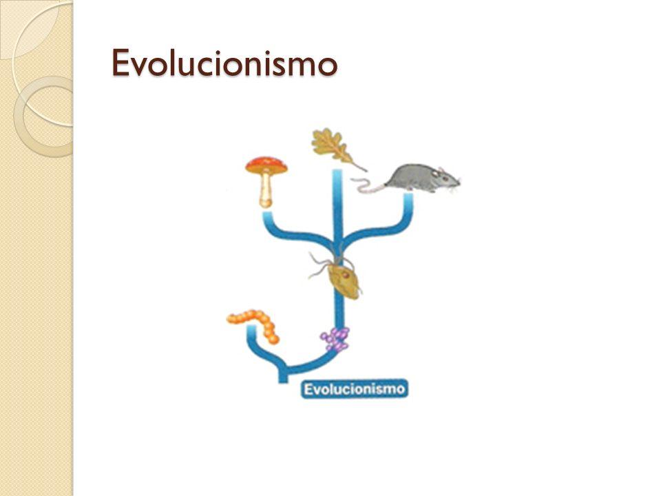 Confronto de ideias entre Lamarck e Darwin