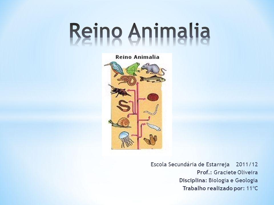 Escola Secundária de Estarreja 2011/12 Prof.: Graciete Oliveira Disciplina: Biologia e Geologia Trabalho realizado por: 11ºC