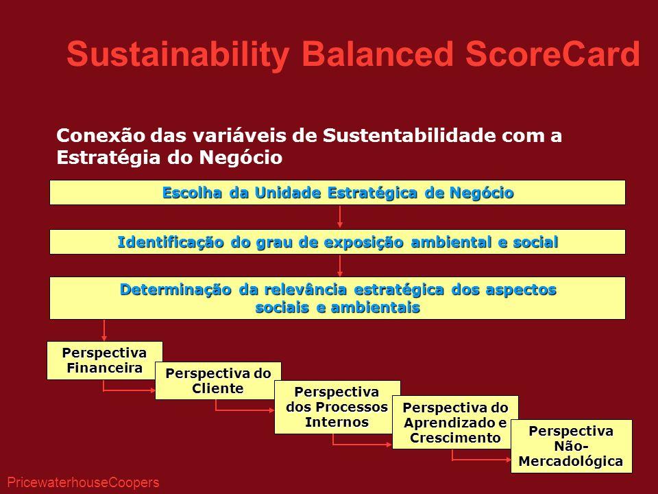 Conexão das variáveis de Sustentabilidade com a Estratégia do Negócio Escolha da Unidade Estratégica de Negócio Identificação do grau de exposição ambiental e social Determinação da relevância estratégica dos aspectos sociais e ambientais Perspectiva Financeira Perspectiva do Cliente Perspectiva dos Processos Internos Perspectiva do Aprendizado e Crescimento Perspectiva Não- Mercadológica Sustainability Balanced ScoreCard PricewaterhouseCoopers