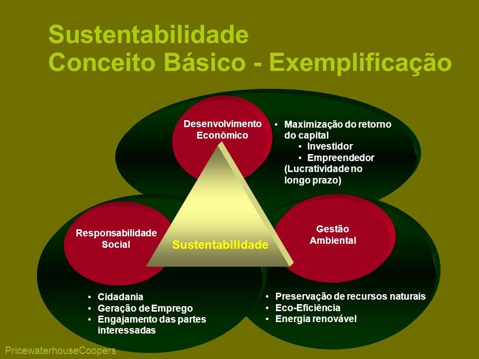Maximização do retorno do capital Investidor Empreendedor (Lucratividade no longo prazo) Preservação de recursos naturais Eco-Eficiência Energia renovável Cidadania Geração de Emprego Engajamento das partes interessadas Desenvolvimento Econômico Gestão Ambiental Responsabilidade Social Sustentabilidade Sustentabilidade Conceito Básico - Exemplificação PricewaterhouseCoopers
