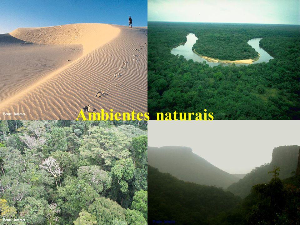 Ambientes naturais Fonte: Internet.