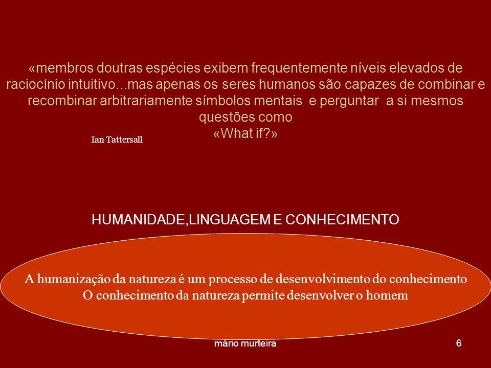 mário murteira6 «membros doutras espécies exibem frequentemente níveis elevados de raciocínio intuitivo...mas apenas os seres humanos são capazes de c