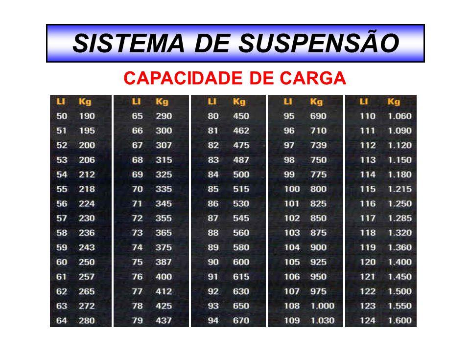 CAPACIDADE DE CARGA