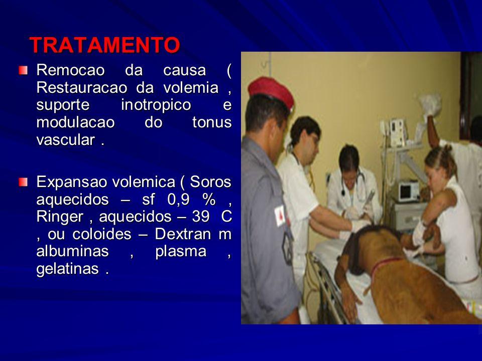 TRATAMENTO Remocao da causa ( Restauracao da volemia, suporte inotropico e modulacao do tonus vascular. Expansao volemica ( Soros aquecidos – sf 0,9 %