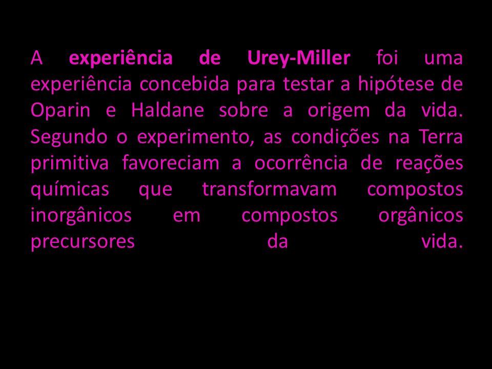 A experiência de Urey-Miller foi uma experiência concebida para testar a hipótese de Oparin e Haldane sobre a origem da vida. Segundo o experimento, a