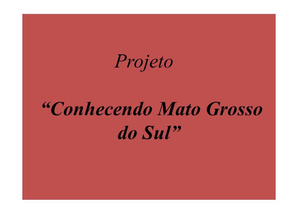 De fato, em 11 de outubro de 1977, o presidente Ernesto Geisel assinou a Lei Complementar 31, que criou o Estado de Mato Grosso do Sul, em área desmembrada do estado de Mato Grosso.