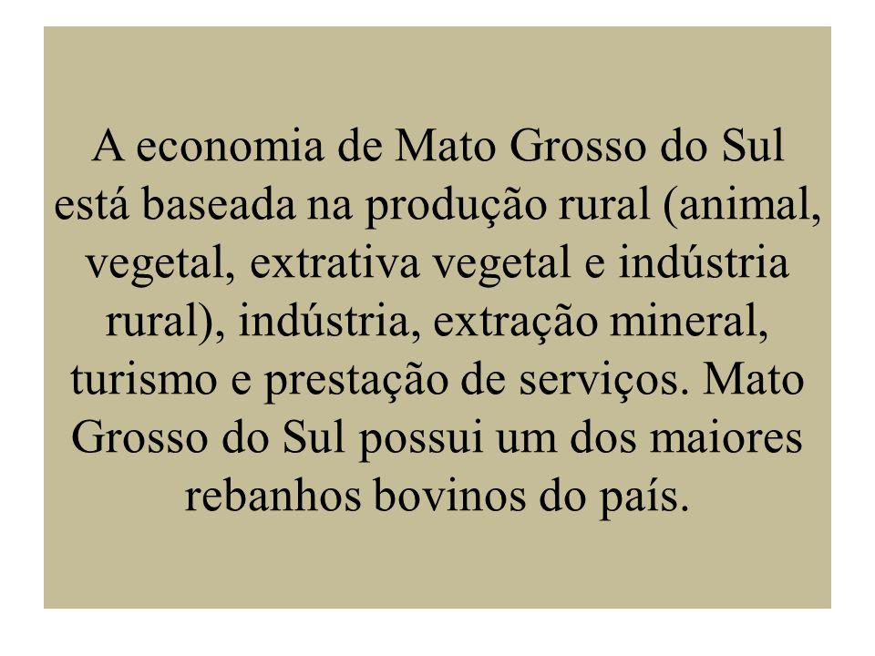 A economia de Mato Grosso do Sul está baseada na produção rural (animal, vegetal, extrativa vegetal e indústria rural), indústria, extração mineral, t