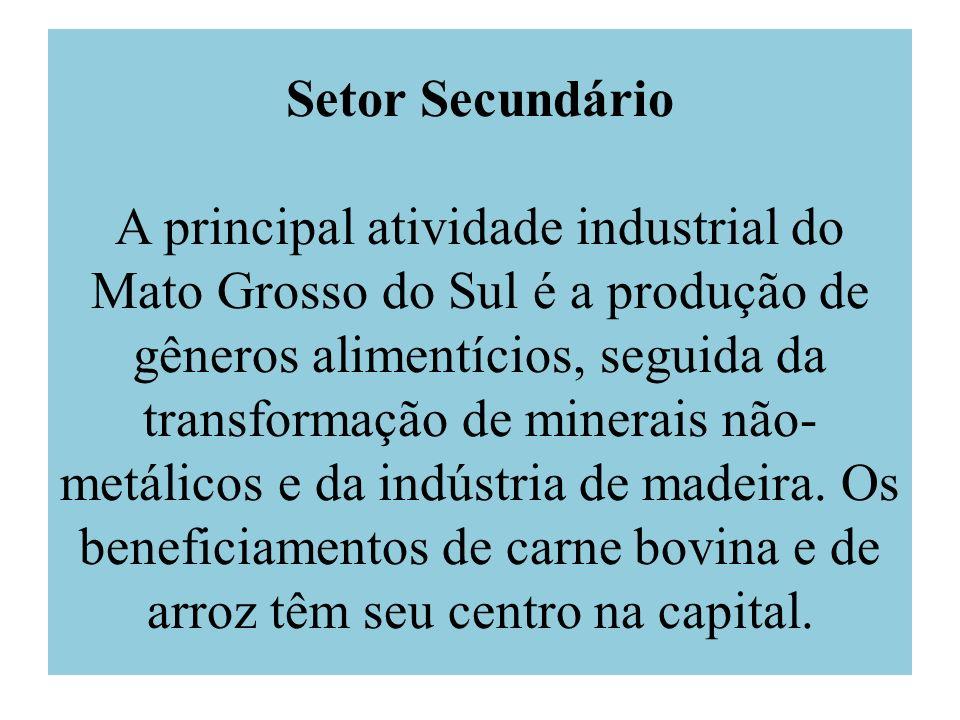 Setor Secundário A principal atividade industrial do Mato Grosso do Sul é a produção de gêneros alimentícios, seguida da transformação de minerais não