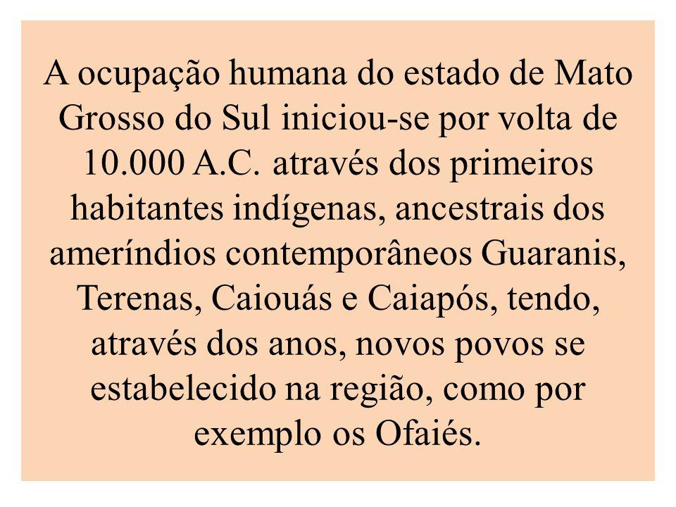 A ocupação humana do estado de Mato Grosso do Sul iniciou-se por volta de 10.000 A.C. através dos primeiros habitantes indígenas, ancestrais dos amerí