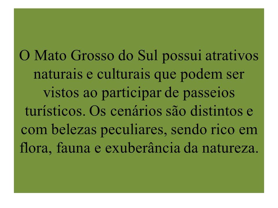 O Mato Grosso do Sul possui atrativos naturais e culturais que podem ser vistos ao participar de passeios turísticos. Os cenários são distintos e com