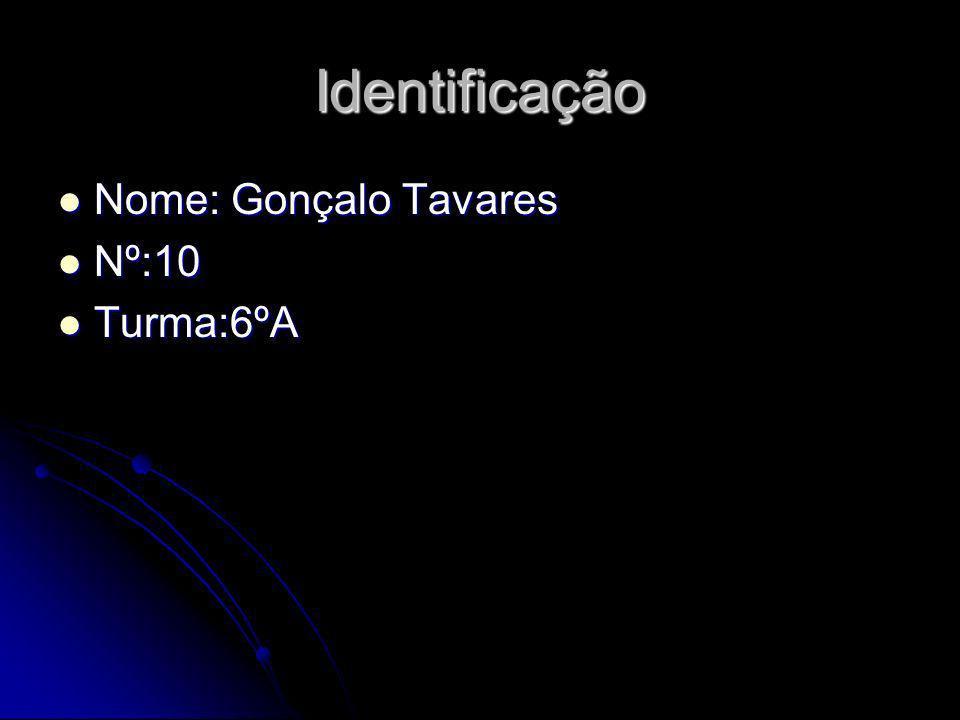 Identificação Nome: Gonçalo Tavares Nome: Gonçalo Tavares Nº:10 Nº:10 Turma:6ºA Turma:6ºA