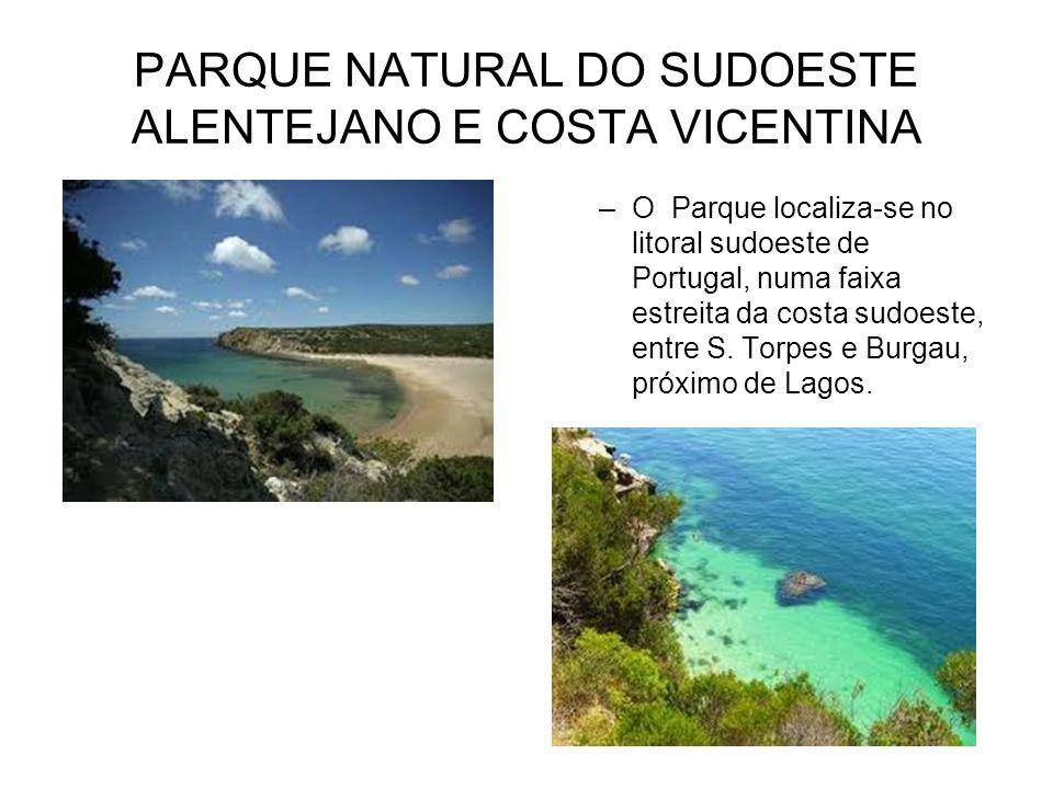 PARQUE NATURAL DO SUDOESTE ALENTEJANO E COSTA VICENTINA –O Parque localiza-se no litoral sudoeste de Portugal, numa faixa estreita da costa sudoeste,