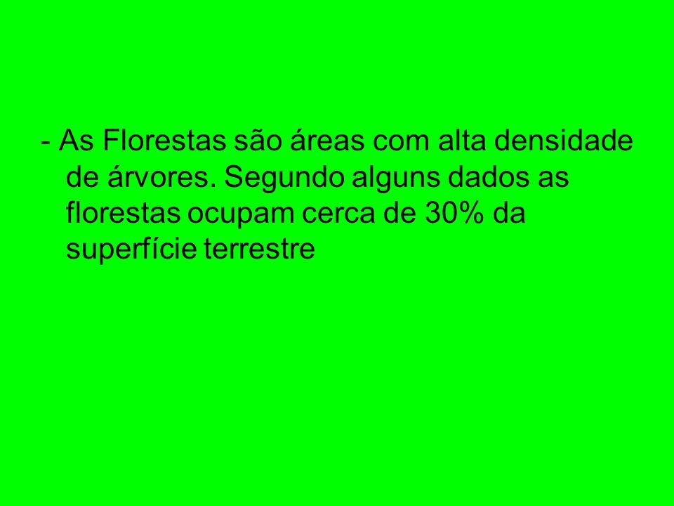 - As Florestas são áreas com alta densidade de árvores. Segundo alguns dados as florestas ocupam cerca de 30% da superfície terrestre