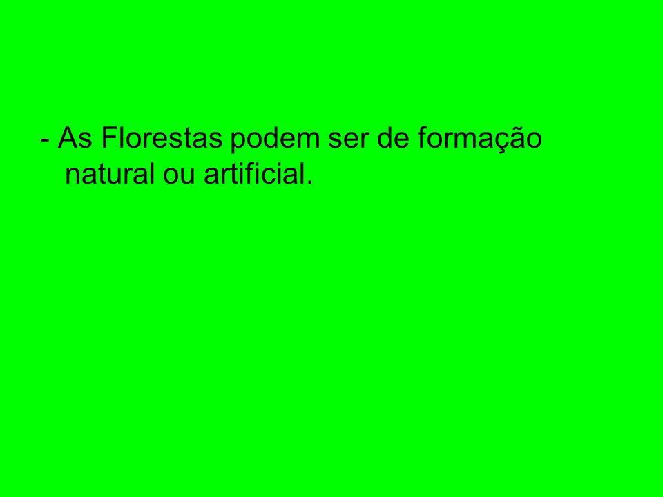 - As Florestas podem ser de formação natural ou artificial.