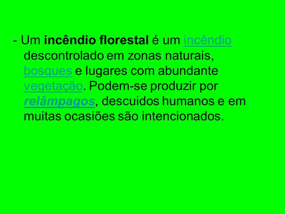 - Um incêndio florestal é um incêndio descontrolado em zonas naturais, bosques e lugares com abundante vegetação. Podem-se produzir por relâmpagos, de