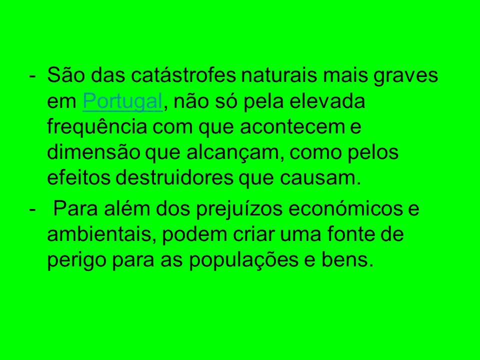 -São das catástrofes naturais mais graves em Portugal, não só pela elevada frequência com que acontecem e dimensão que alcançam, como pelos efeitos de