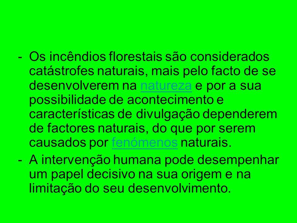 -Os incêndios florestais são considerados catástrofes naturais, mais pelo facto de se desenvolverem na natureza e por a sua possibilidade de acontecim