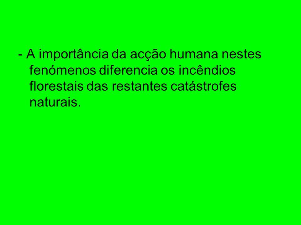 - A importância da acção humana nestes fenómenos diferencia os incêndios florestais das restantes catástrofes naturais.