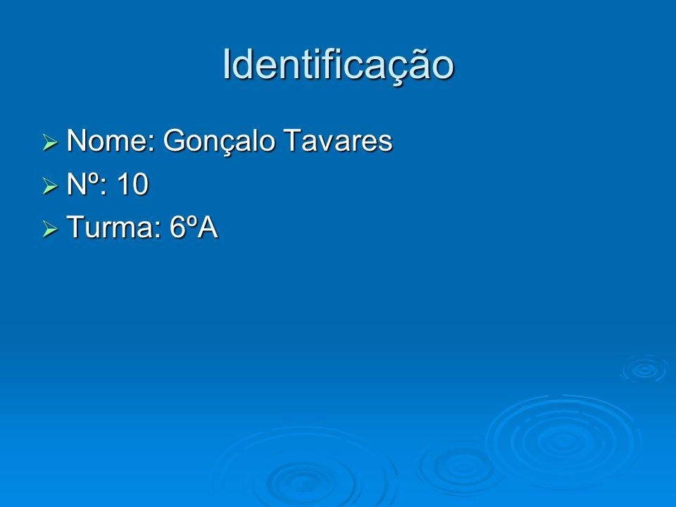 Identificação Nome: Gonçalo Tavares Nome: Gonçalo Tavares Nº: 10 Nº: 10 Turma: 6ºA Turma: 6ºA