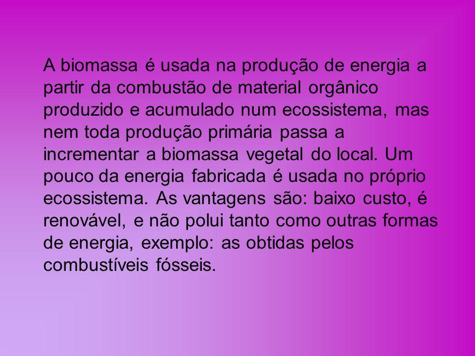 Utilização como combustível Um dos primeiros empregos da biomassa pelo ser humano para adquirir energia teve início com a utilização do fogo como fonte de calor e luz.