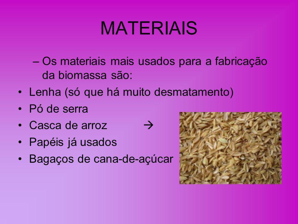 PRODUTOS DERIVADOS DA BIOMASSA Bio-óleo Bio-gás Etanol celulósico Bioetanol: no Brasil é feito com cana-de-açúcar, na França com beterraba e nos EUA com milho.