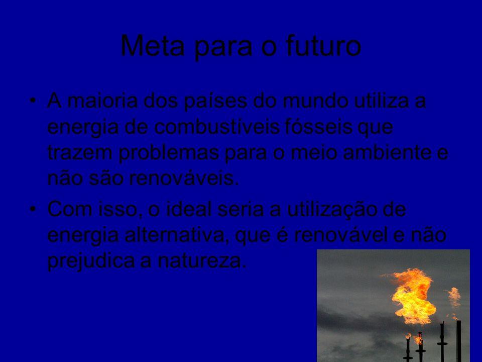 Meta para o futuro A maioria dos países do mundo utiliza a energia de combustíveis fósseis que trazem problemas para o meio ambiente e não são renováv