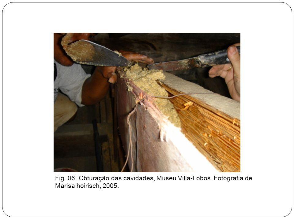 Fig. 06: Obturação das cavidades, Museu Villa-Lobos. Fotografia de Marisa hoirisch, 2005.