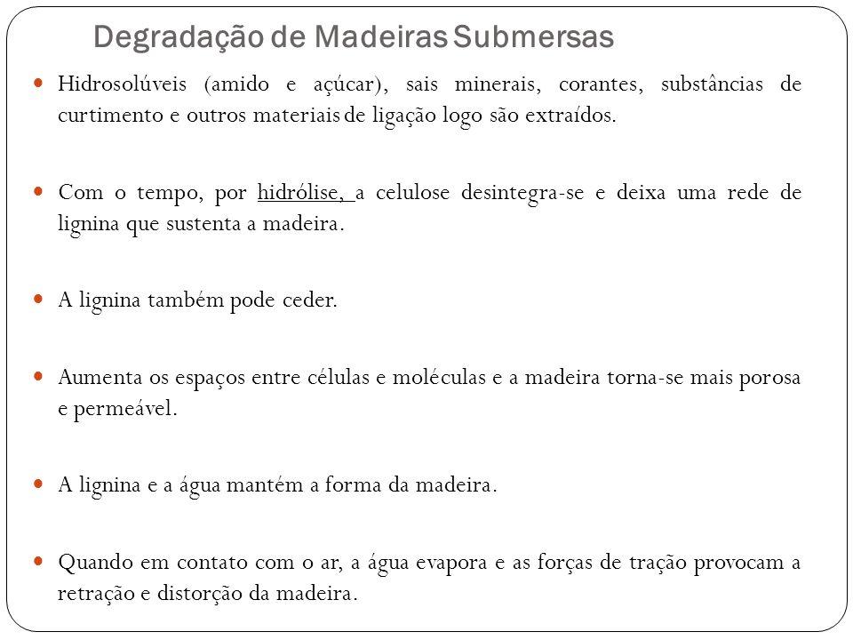 Degradação de Madeiras Submersas Hidrosolúveis (amido e açúcar), sais minerais, corantes, substâncias de curtimento e outros materiais de ligação logo