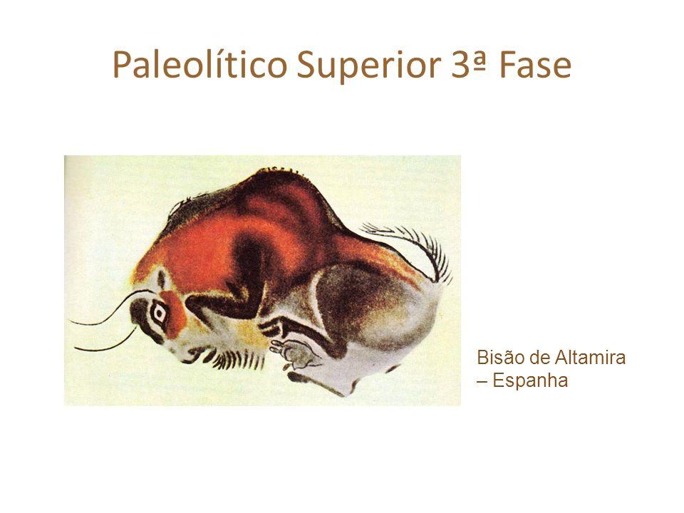 Paleolítico Superior 3ª Fase Bisão de Altamira – Espanha
