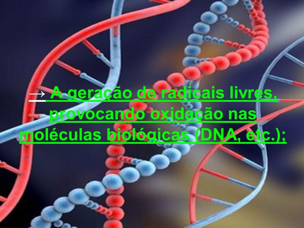 A geração de radicais livres, provocando oxidação nas moléculas biológicas (DNA, etc.);