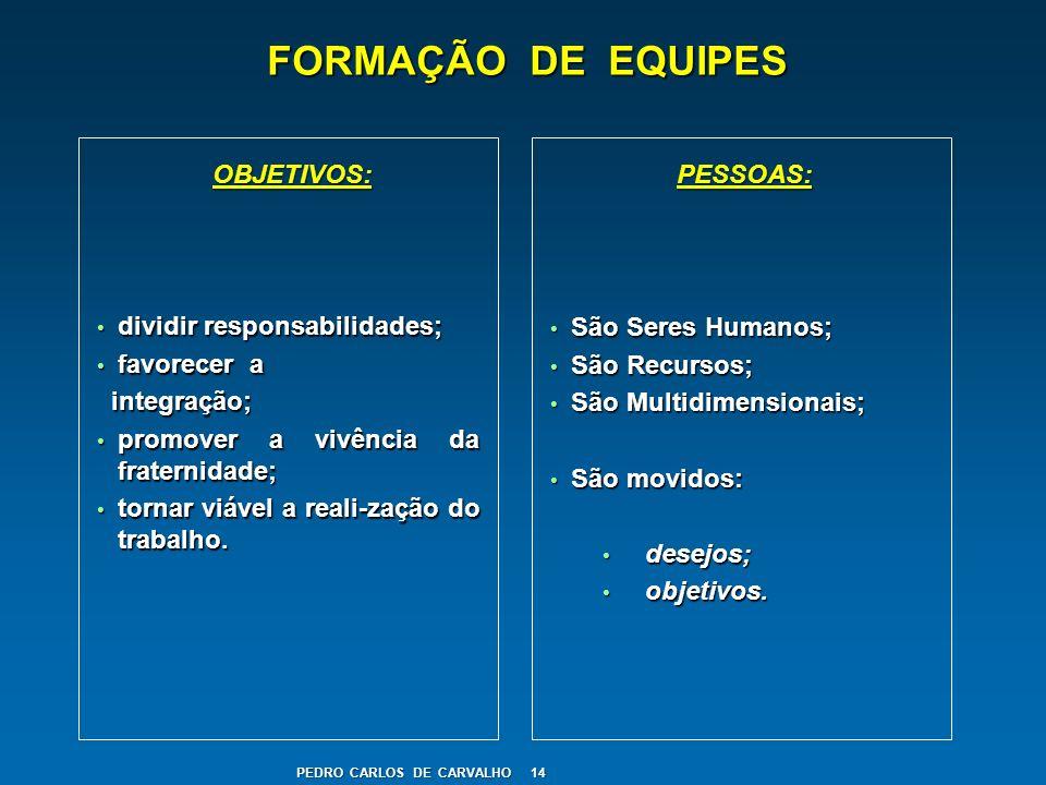FORMAÇÃO DE EQUIPES dividir responsabilidades; dividir responsabilidades; favorecer a favorecer a integração; integração; promover a vivência da frate
